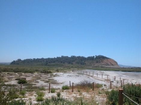 Torrey Pines State Reserve, Del Mar, CA