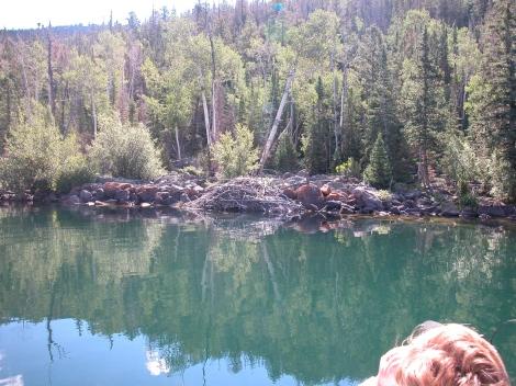 beaver lodge, Utah