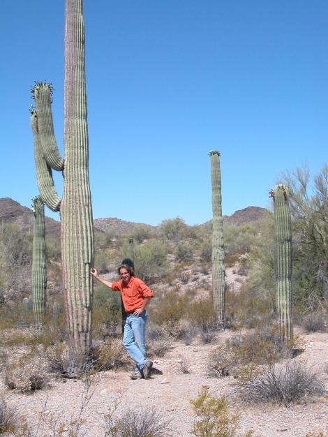 Organ-pipe National Monument, Arizona